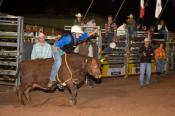 Rodeo;activity;animals;beef_cattle;bucking;bull;cattle;cowboys;livestock;ride;ri