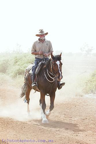 activity;ride;animals;livestock;horse;rider;border;dash;Wakool;Mallee;vertical;dust;people;gender;male;men;man;