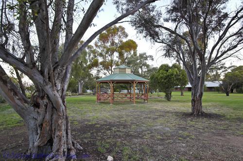 environment;scenery;plants;tree;deciduous;moulamein;wakool;horizontal;flottmann;park;land;county;park;municipal;park;architecture;