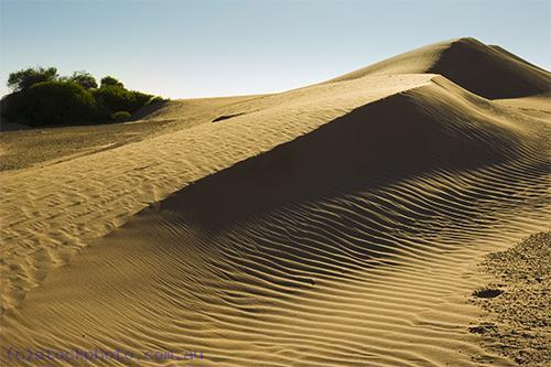 Australia;Victoria;arid;australia;australian;climate;color;colour;desert;deserts;detail;drought;dry;dune;dunes;evening;golden;grains;harsh;high;hill;hills;horizontal;hot;inhospitable;landscape;lines;mildura;nature;pattern;perie;perry;red;ripple;sand;scenery;shifting;texture;travel;unspoilt;wave;wind;yellow;