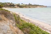 animal;australia;australian;bay;beach;clouds;coast;ecotourism;horizontal;island;
