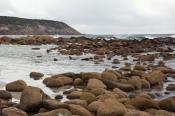 animal;australian;bay;beach;clouds;environment;holiday;horizontal;island;kangaro