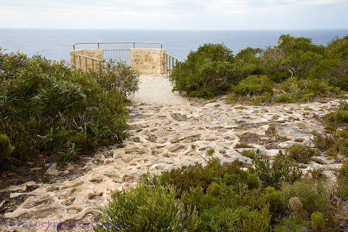 animal;australian;borda;cape;chase;cliff;environment;flinders;horizontal;island;kangaroo;kangaroo;island;land;lookout;oceania;path;rocks;scenery;south;water;