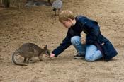 animal;animala;animals;australian;bird;birds;boy;fauna;feeding;gender;holiday;ho