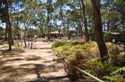 arborea;australian;black_boy;bracken;building;bush;bushland;caves;chase;environm