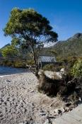 architectural;architecture;australia;beach;boatshed;building;bush;bushland;counc