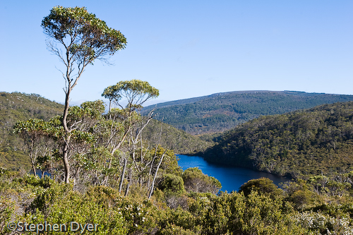 australia;bush;bushland;council;cradle;dove;ecology;ecosystem;environment;environmentalism;heritage;horizontal;lake;land;landscape;meander;mountain;national;national park;nature;park;rocks;scenery;st clair;still;tasmania;tree;vally water;water;wilderness;world