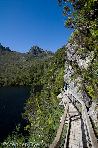 australia;bush;bushland;council;cradle;dove;ecology;ecosystem;environment;environmentalism;female;feminine;gender;heritage;human;human being;human beings;humans;lake;land;landscape;meander;mountain;national;national park;nature;park;people;person;rocks;scenery;st clair;still;tasmania;tree;vally water;vertical;walkway;water;wilderness;woman;womanly;women;world