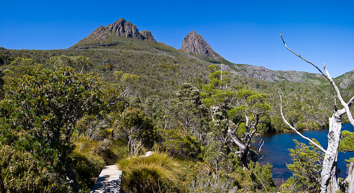 australia;bush;bushland;council;cradle;dove;ecology;ecosystem;environment;environmentalism;heritage;horizontal;lake;land;meander;mountain;national;national park;nature;pano;panorama;park;rocks;scenery;st clair;still;tasmania;tree;vally;water;water landscape;wilderness;world