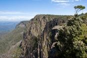 australia;australian;conservation;devils;ecology;ecosystem;environment;environme
