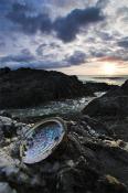 Cape;Conran;East;Gippsland;environment;scenery;land;beach;sunrise;sunrises;rocks