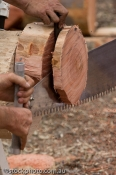 EQUIPMENT_OBJECTS;australia;barham;bush;chopping;construction_equipment;crosscut