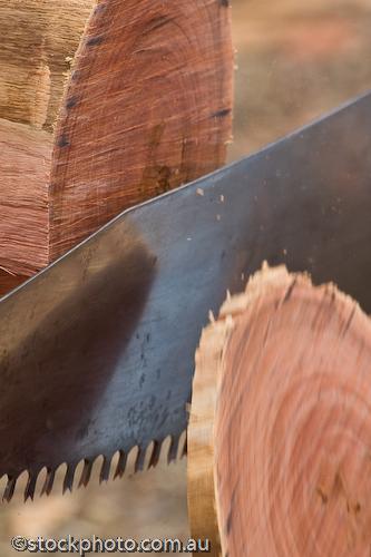 EQUIPMENT-OBJECTS;australia;barham;bush;chopping;construction equipment;crosscut;cutting;entertainment;festival;gum;murray;red;river;saw;tree;water;wood;koondrook