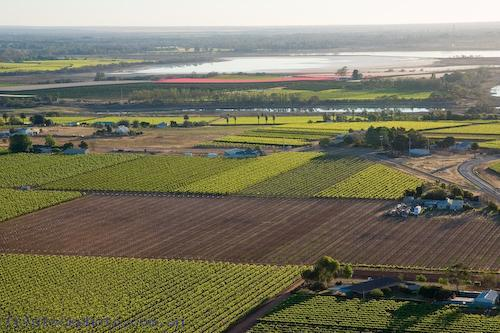 aerial;planting;crops;growing;grapes;agriculture;farming;farmland;farms;rural;irrigation;field;paqddock;wheat;stubble;morning;early;above;environment;scenery;land;rural;landscape;rural;aerial;green;colour;color;australia;horizontal;