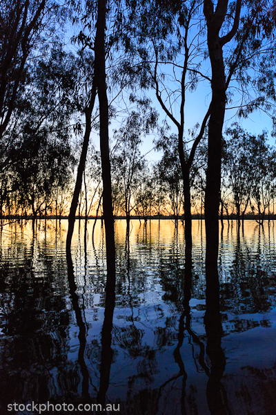 Lakes;australia;background;beautiful;beauty;blue;branch;bright;color;colorful;dark;dawn;evening;forest;hattah;lake;landscape;light;line;morning;mournpall;natural;nature;orange;outdoor;park;pond;ray;reflection;scene;scenery;silhouette;sky;sun;sunlight;sunrise;sunset;travel;tree;trees;vertical;view;water;wild;wood;yellow