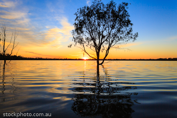 Lakes;australia;background;beautiful;beauty;blue;branch;bright;color;colorful;dark;dawn;evening;forest;hattah;horizontal;lake;landscape;light;line;morning;mournpall;natural;nature;orange;outdoor;park;pond;ray;reflection;scene;scenery;silhouette;sky;sun;sunlight;sunrise;sunset;travel;tree;trees;view;water;wild;wood;yellow