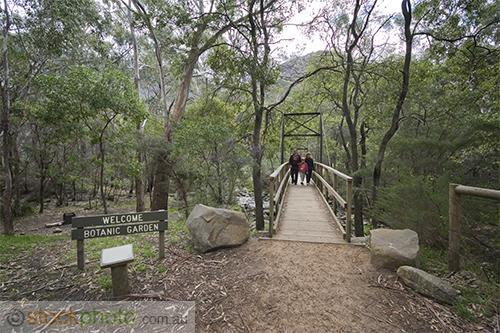 gum;gumtree;trees;tree;tourist;tourism;fern;bracken;action;motion;walking;track;path;people;gender;female;women;woman;male;boy;age;teen;horizontal;burnt;fire;regrowth;transportation;infrastructures;footbridge;man;victoria;grampians;australia;