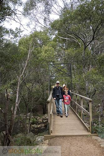 gum;gumtree;trees;tree;tourist;tourism;fern;bracken;action;motion;walking;track;path;people;gender;female;women;woman;male;boy;age;teen;teenager;youth;transportation;infrastructures;footbridge;vertical;burnt;fire;regrowth;victoria;grampians;australia;