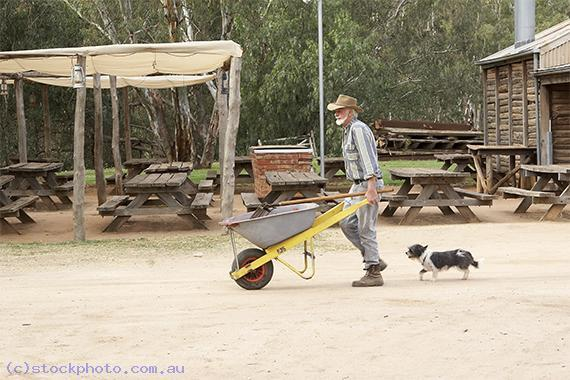 pioneer;settlement;swan;hill;victoria;old;old;fashioned;animals;pets;dog;doggie;love;one;another;man;wheelbarrow;horizontal;