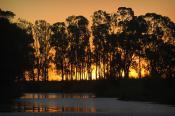 Swan;Hill;victoria;environment;scenery;water;river;murray;marraboor;little;Murra