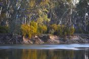 Swan;Hill;victoria;environment;scenery;water;river;murray;murray;river;lift;hori