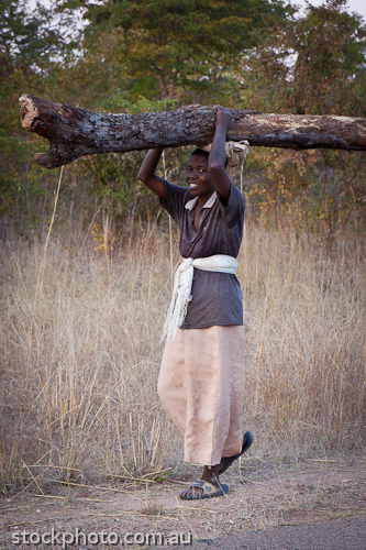 Dete;africa;african;africana;big;carry;collecting;concepts;conservation;ecology;emotion;habitat;happy;heavy;large;load;logs;miombo;national;natural;nature;outdoor;park;savanna;savannah;smile;southern;unspoiled;vertical;wilderness;woman;wood;young;zimbabwe
