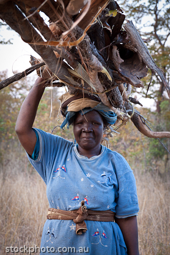 Dete;africa;african;africana;big;collecting;conservation;ecology;heavy;load;miombo;national;natural;nature;old;outdoor;park;safari;savanna;savannah;southern;vertical;wild;wilderness;woman;wood;zimbabwe