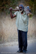 africa;african;africana;animal;big;bushman;collecting;conservation;ecology;habit